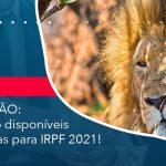 Já Estão Disponíveis As Regras Para Irpf 2021 - Abrir Empresa Simples - ATENÇÃO: já estão disponíveis as regras para IRPF 2021!