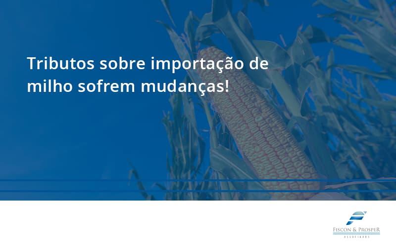 Tributos Sobre Importação De Milho Sofrem Mudanças! Fiscon E Prosper - Contabilidade em São Paulo - SP | Fiscon e Prosper Associados - Tributos sobre importação de milho sofrem mudanças!